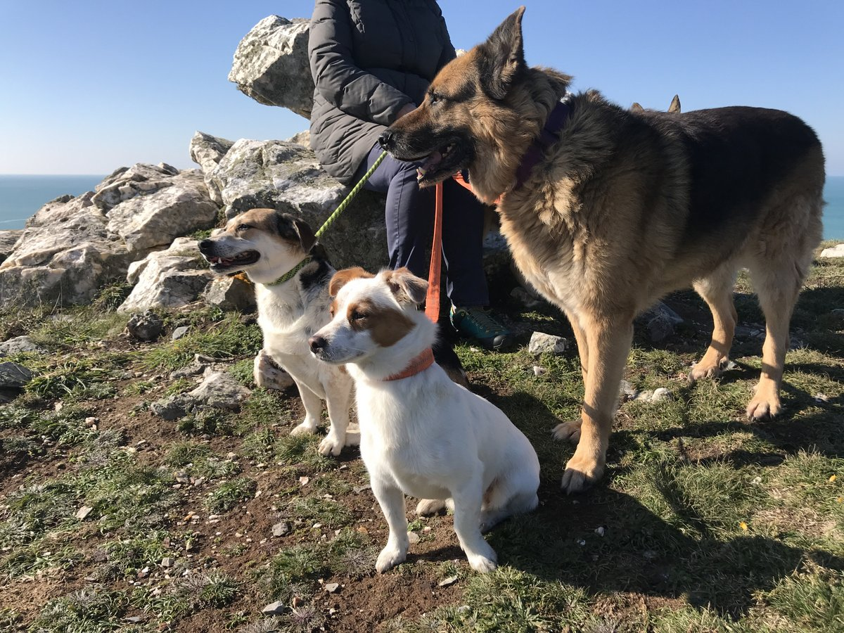 Felix-June und Splint am Pointe de Kerrox